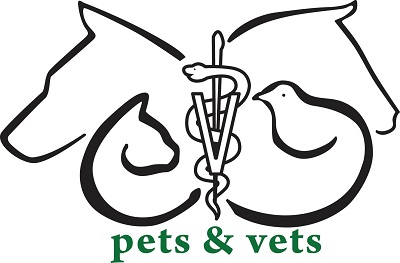 Pet And Vets Miami Beach